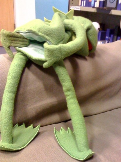 Use Your Hand Puppet As a Cellphone Case, Gizmodo's Kermit the frog Goatse