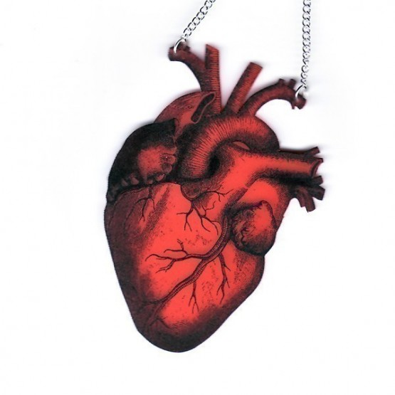 paraphernalia anatomica red heart necklace